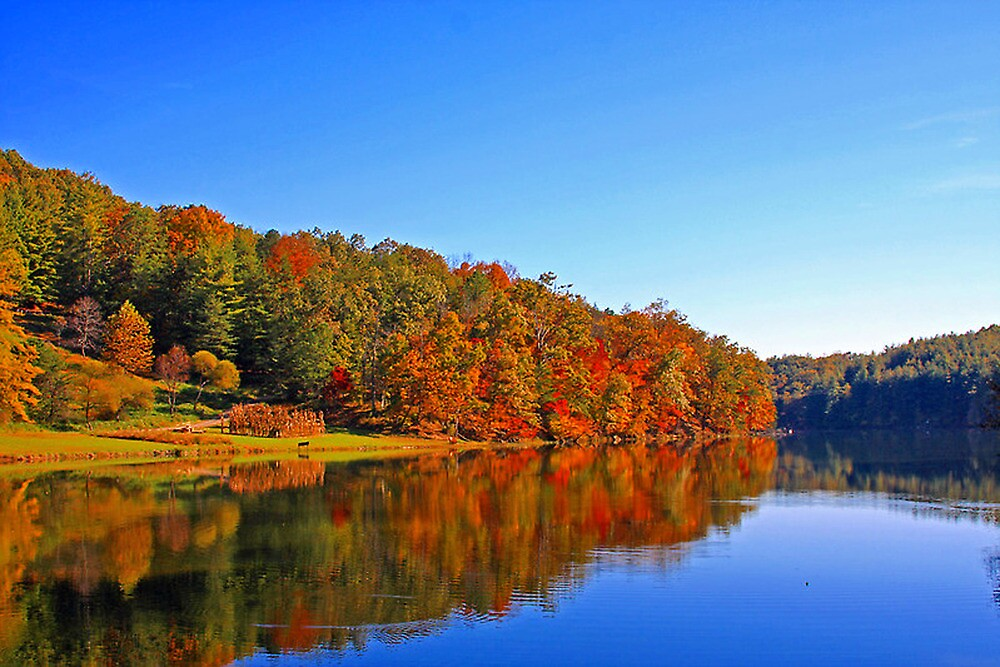 *FALL REFLECTIONS* by Van Coleman