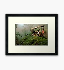 Colombian Road Stand Framed Print