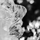Man Frozen In Ice 2018 by Thomas Young
