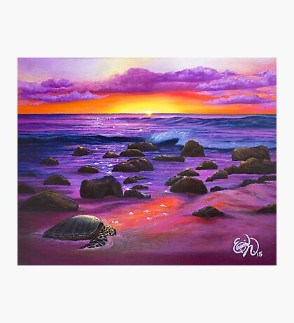 Reflections of Sunlit Honu  Photographic Print