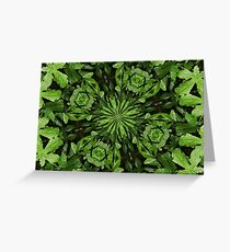 Leafy Pattern with Dew Greeting Card