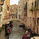 Rush Hour In Venice  by Larry Costales