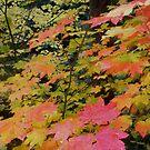Symphony of Leaves by Thundercatt99