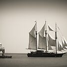 Peacemaker in Port Washington by James Meyer