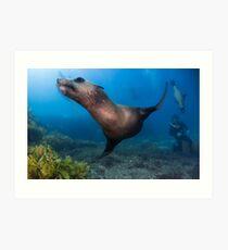 Underwater Gymnastics Art Print