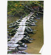 Tarr Steps Poster