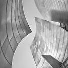 Walt Disney Concert Center I by Yves Rubin