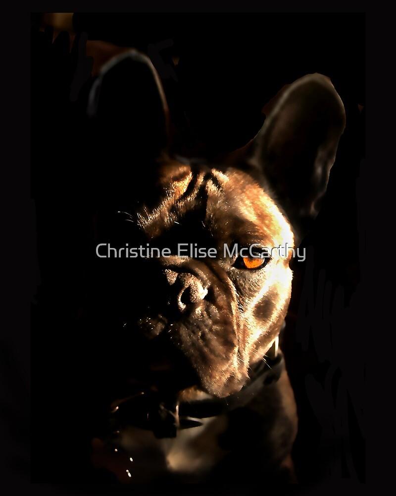 DEXTER by Christine Elise McCarthy