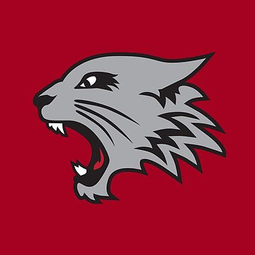 East High School Wildcats Logo by hanelyn