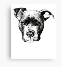 American Pit Bull Terrier Face Design - A Pittie Christmas Gift  Canvas Print