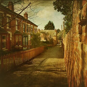 Terrace walk, Worcester by Lissywitch