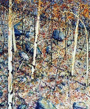 Hillside at Conimbla.(Barryrennie) by Richard  Tuvey