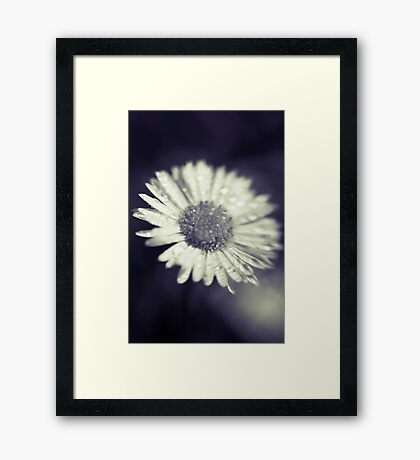 I heart daisies Framed Print