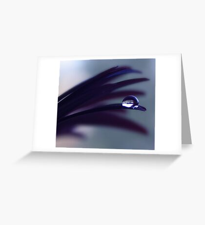 a drop of purple velvet Greeting Card