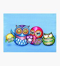 Funny Owl Family Portrait Photographic Print