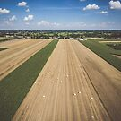 Aerial view of round hay bales on stubble under blue cloudy sky by Lukasz Szczepanski