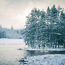 Winter at a Loch Near Kingussie by Cat Burton