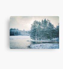 Winter at a Loch Near Kingussie (Cat Burton Photography) Metal Print