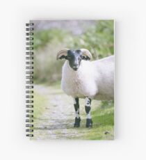 Dotty The sheep Spiral Notebook