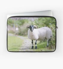 Dotty The Sheep (Cat Burton Photography) Laptop Sleeve