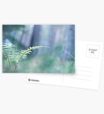 Ferns and Daydreams (Cat Burton Photography) Postcards