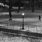 central park  by apam