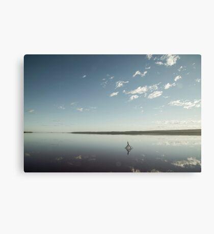 Blue mangrove Canvas Print