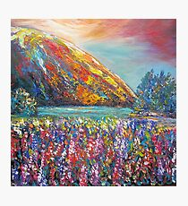 Mountain Lupins Photographic Print