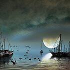 Moon Bay by Igor Zenin