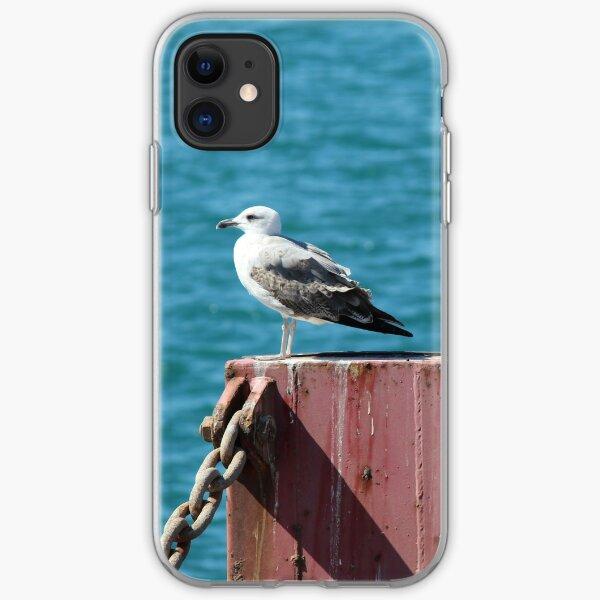 Hafenmöwe iPhone Flexible Hülle
