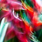 Heliconia swirls #01 by LouD
