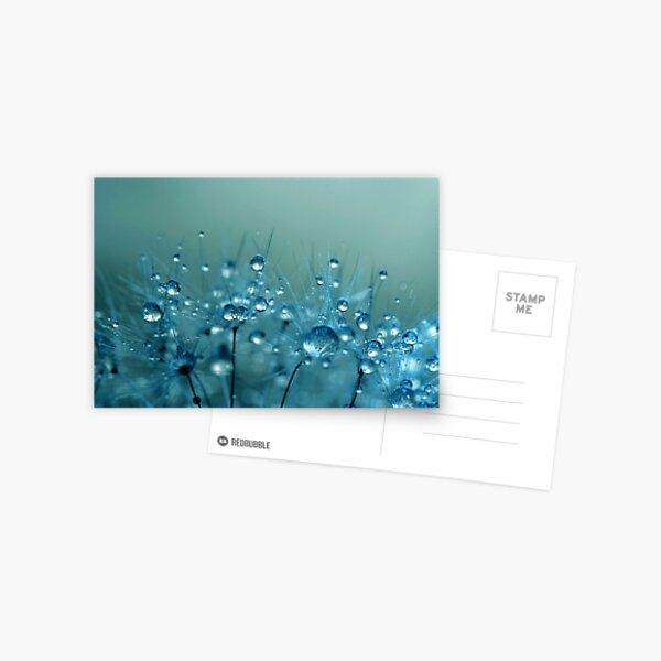 Blue Shower Postcard