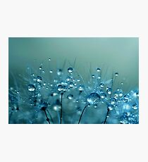 Blue Shower Photographic Print