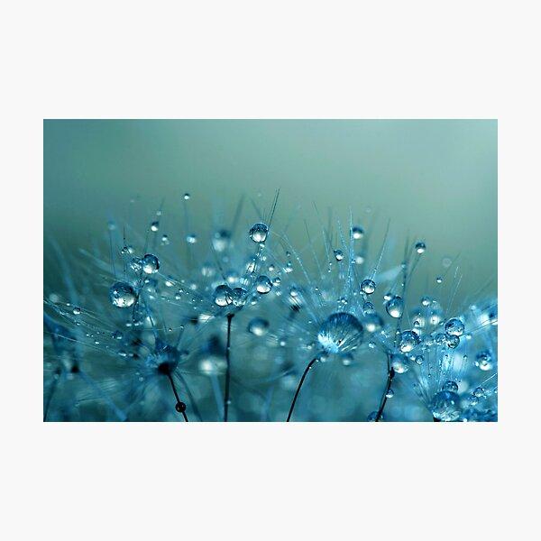 Blue Shower Photographic Print