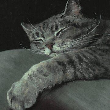 Sleepy Cat on a Pillow by phumbargar
