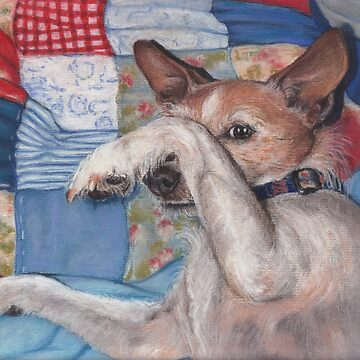 Dog in a Quilt by phumbargar