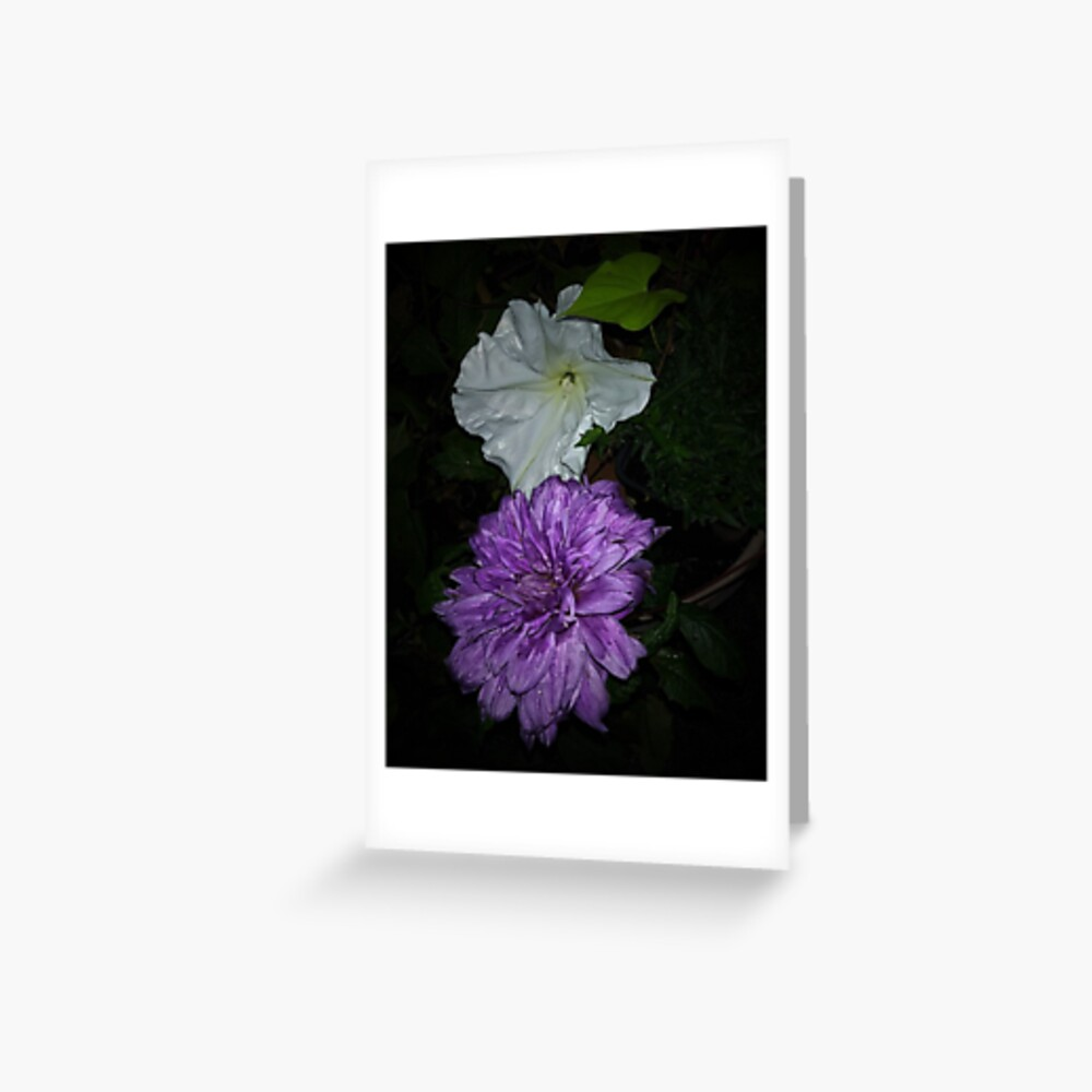 Dahlia and Moonflower Greeting Card