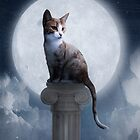 Cat In The Moonlight by Manndi