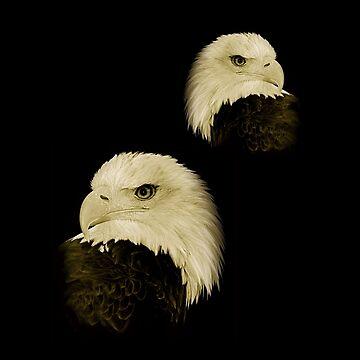 American Eagles by louisefahy