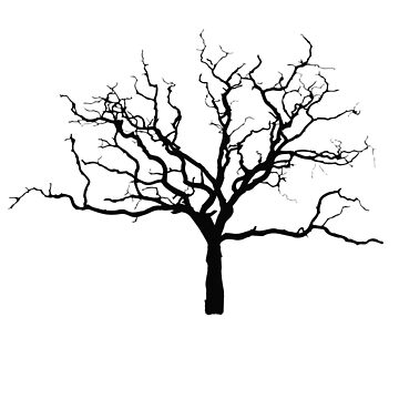 Minimalist Bare Naked Dead Tree Silhouette Outline for Autumn Fall by RowdyRouton