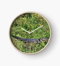 Alligator in the swamp with a big Smile! Clock