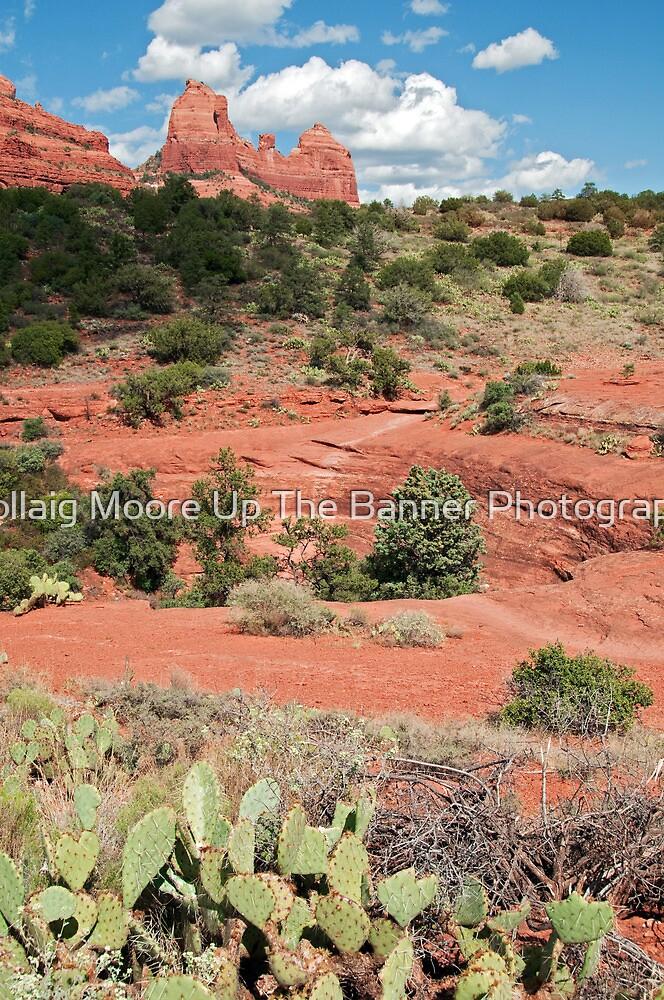 Sedona, Arizona by Noel Moore Up The Banner Photography
