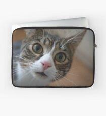 Cute Cat Laptop Sleeve