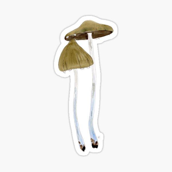 Psilocybe subaeruginosa by Kay Smith Sticker