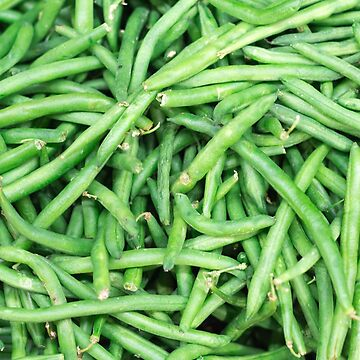 Farm Fresh Green Organic String Snap Beans Vegan Vegetable V2 by FancyFrocks