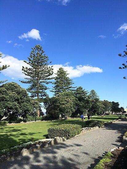Napier Beachside Walk by Michael McGimpsey