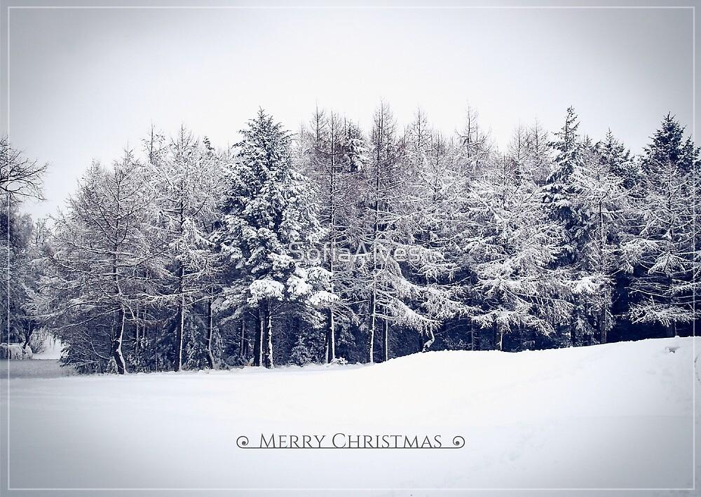 Snowy Park  by SofiaAlves