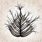 Hairy Leaf Abstract Art In Sepia by Boriana Giormova