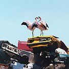 Flamingo - Josh Keyes by Cesar Costa