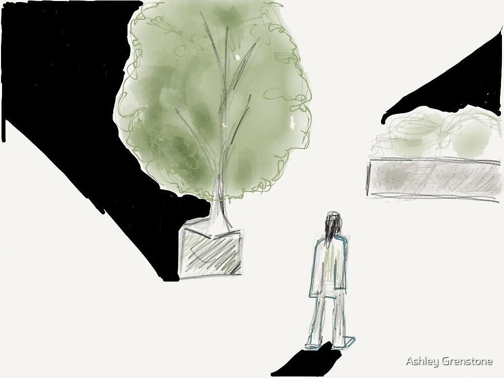 Which Way by Ashley Grenstone